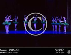 SPECTACLE-DSC00557