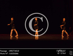 SPECTACLE-DSC01066