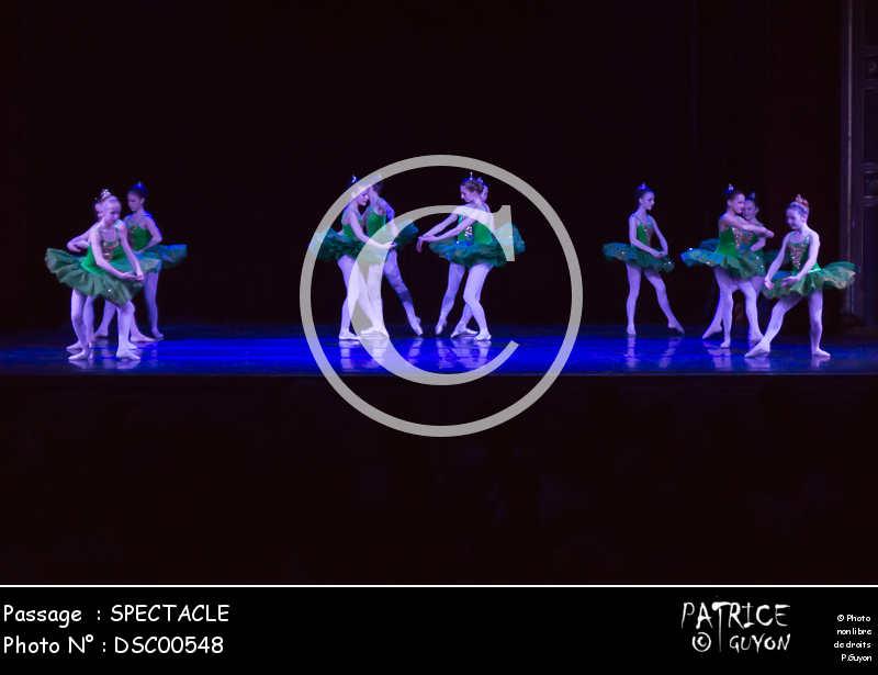 SPECTACLE-DSC00548