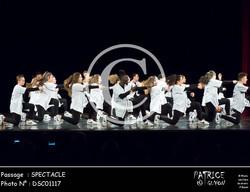 SPECTACLE-DSC01117