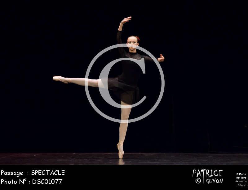 SPECTACLE-DSC01077
