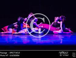 SPECTACLE-DSC00954
