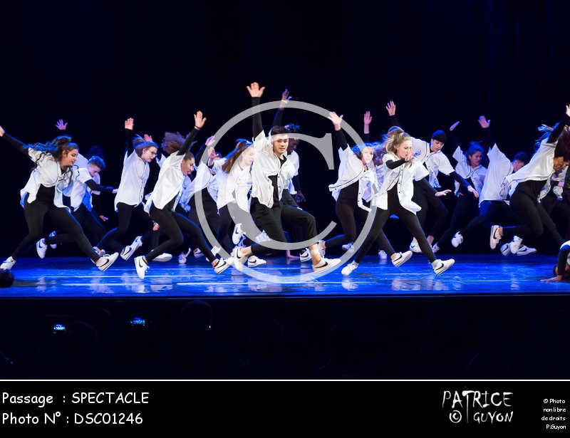 SPECTACLE-DSC01246