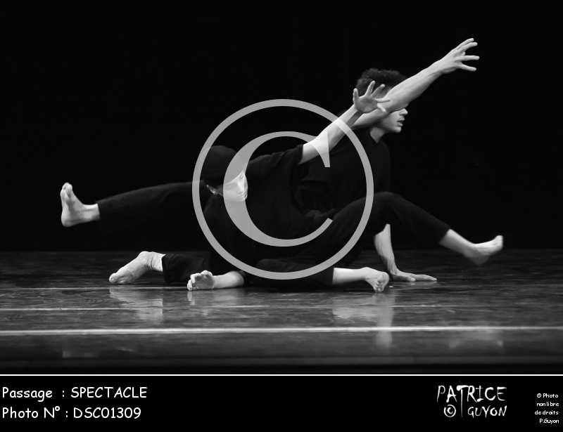 SPECTACLE-DSC01309