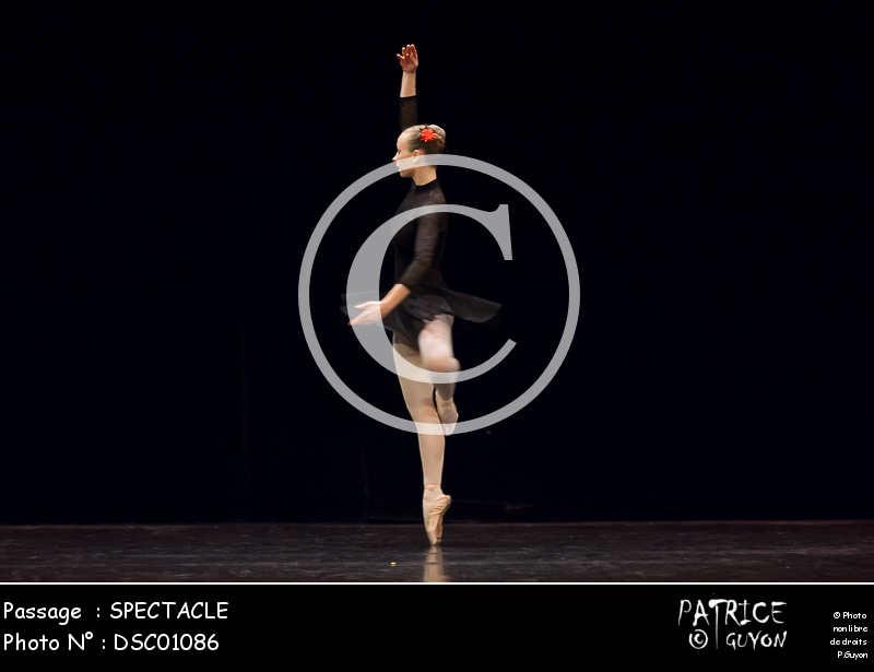 SPECTACLE-DSC01086