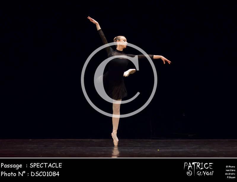 SPECTACLE-DSC01084