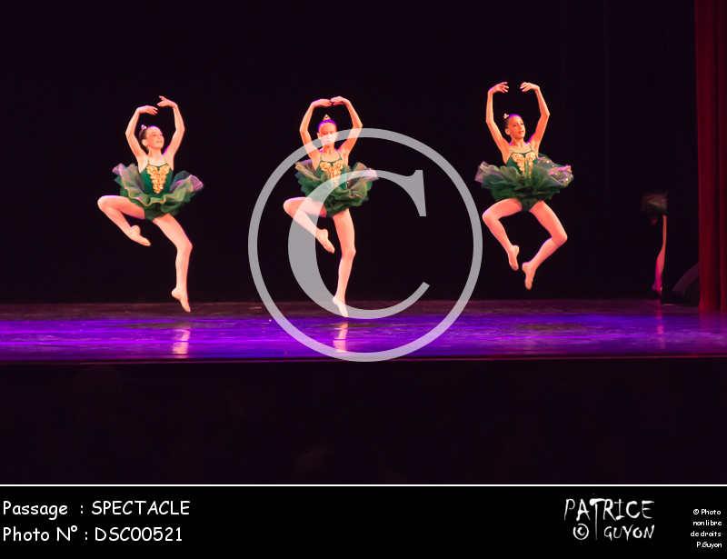 SPECTACLE-DSC00521