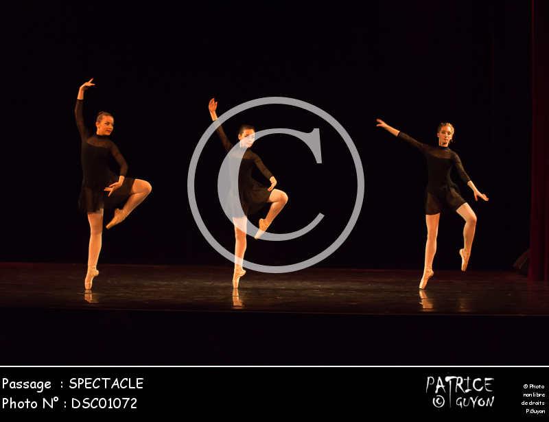 SPECTACLE-DSC01072