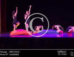SPECTACLE-DSC00993