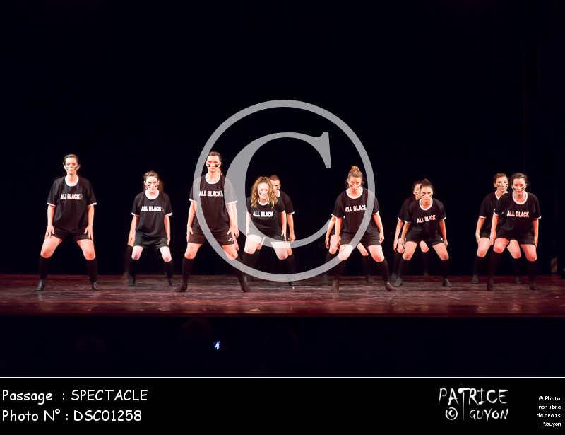 SPECTACLE-DSC01258