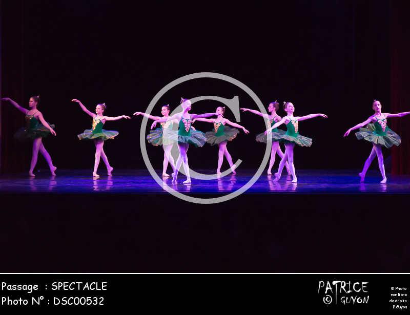 SPECTACLE-DSC00532