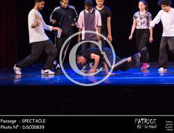 SPECTACLE-DSC00839
