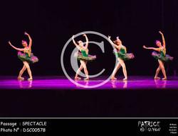 SPECTACLE-DSC00578