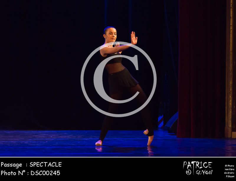 SPECTACLE-DSC00245
