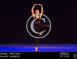 SPECTACLE-DSC00276