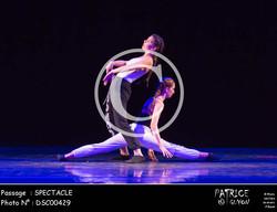 SPECTACLE-DSC00429
