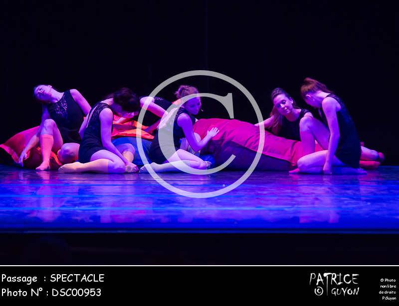 SPECTACLE-DSC00953