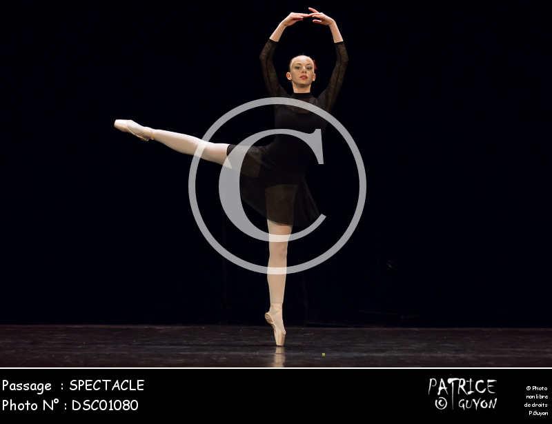 SPECTACLE-DSC01080