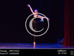 SPECTACLE-DSC00255