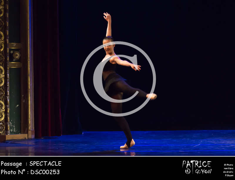 SPECTACLE-DSC00253