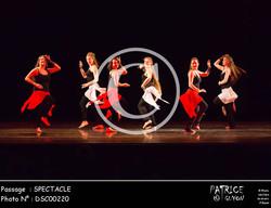 SPECTACLE-DSC00220