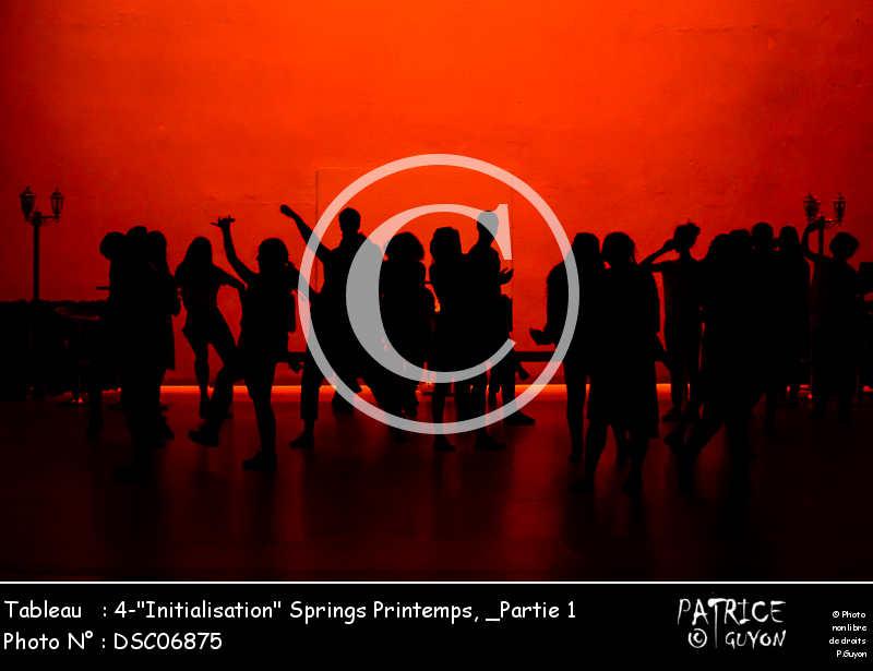 _Partie 1, 4--Initialisation- Springs Printemps-DSC06875