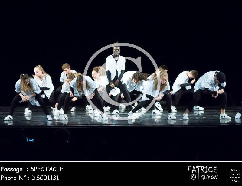 SPECTACLE-DSC01131