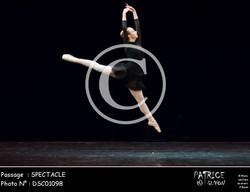 SPECTACLE-DSC01098