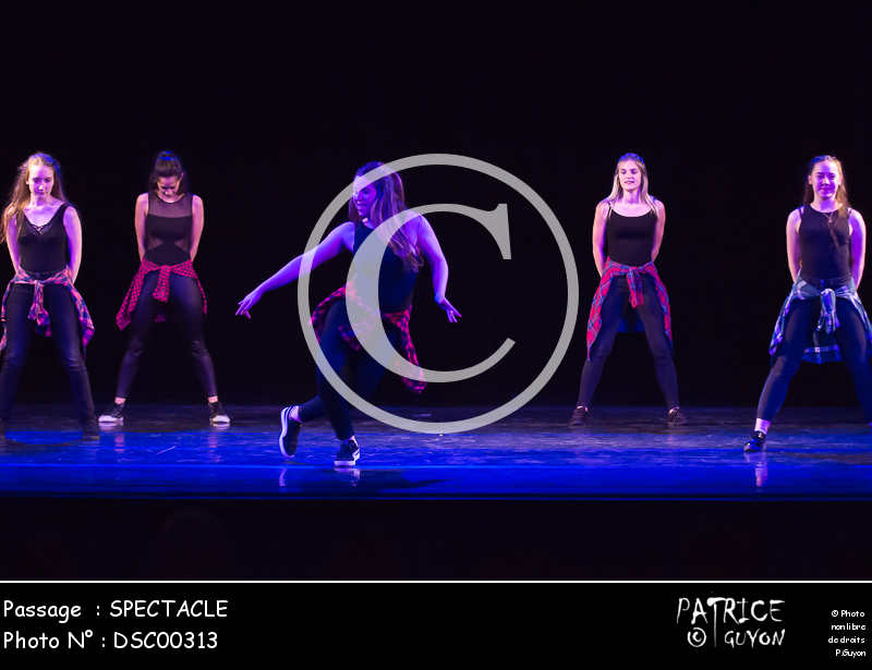 SPECTACLE-DSC00313