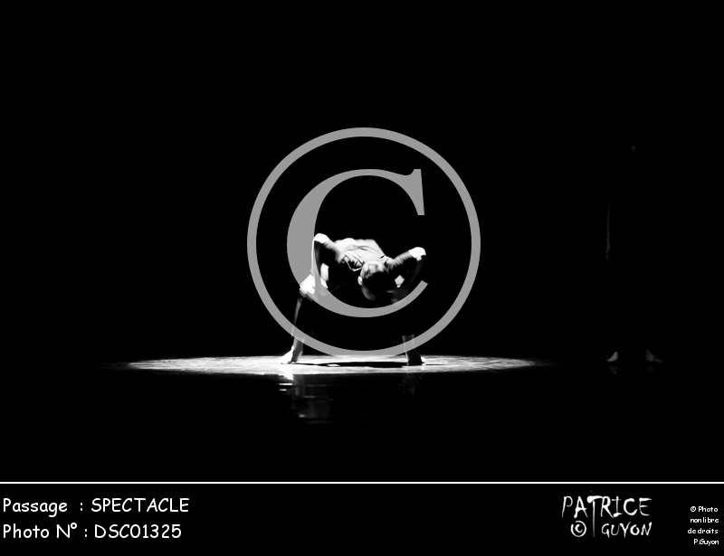 SPECTACLE-DSC01325
