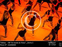 _Partie 2, 08--Un monde de folies--DSC00935