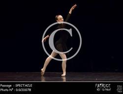SPECTACLE-DSC01078