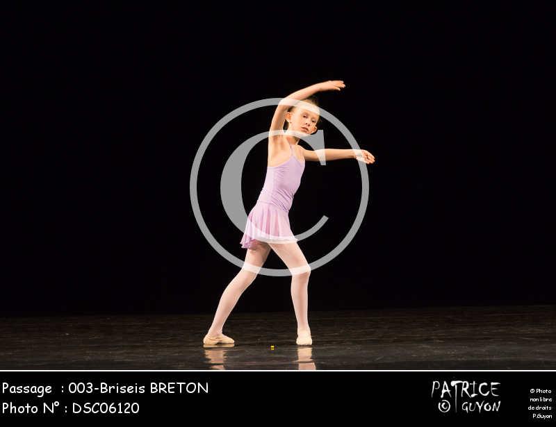 003-Briseis BRETON-DSC06120