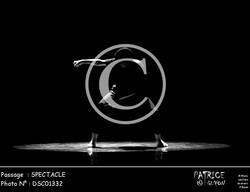 SPECTACLE-DSC01332