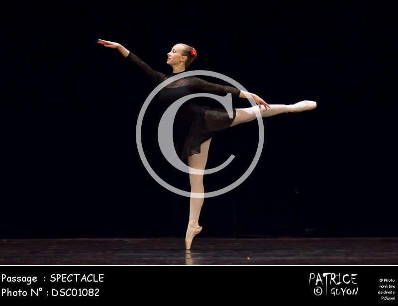SPECTACLE-DSC01082