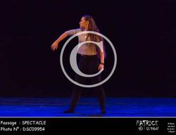 SPECTACLE-DSC09954