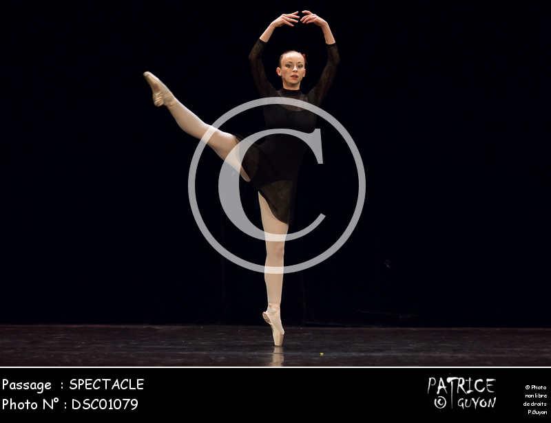 SPECTACLE-DSC01079