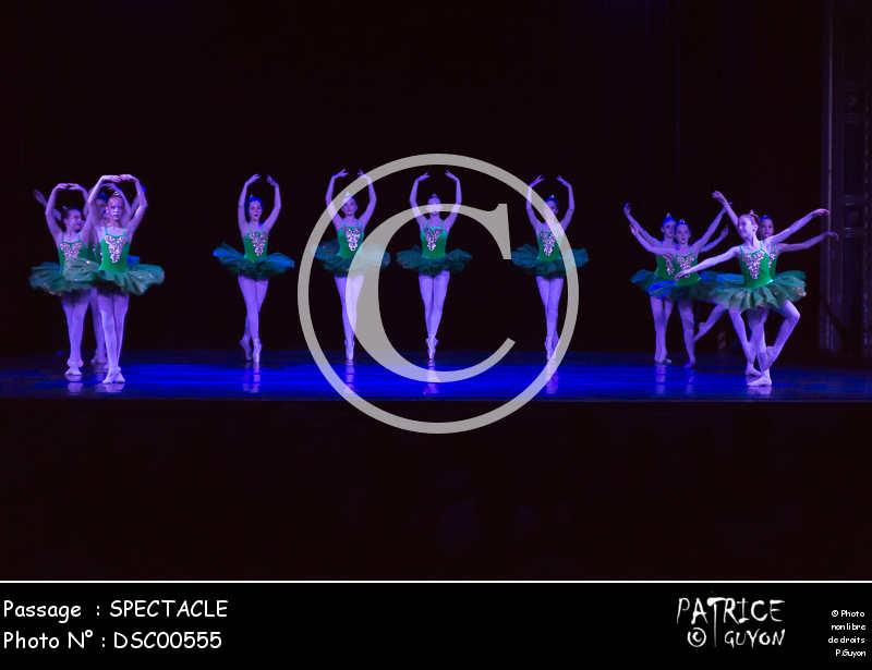 SPECTACLE-DSC00555