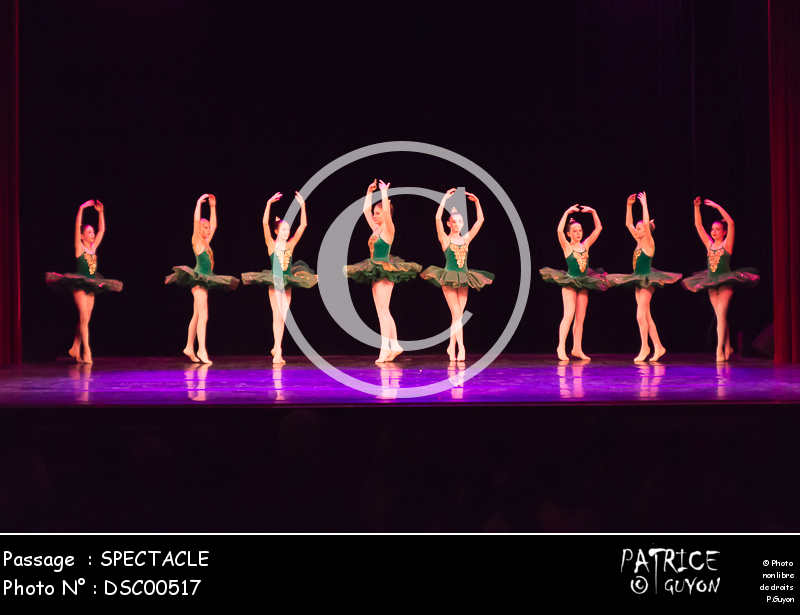 SPECTACLE-DSC00517