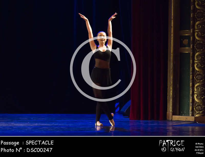 SPECTACLE-DSC00247