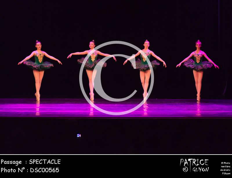 SPECTACLE-DSC00565
