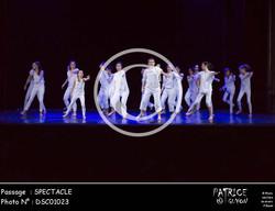 SPECTACLE-DSC01023