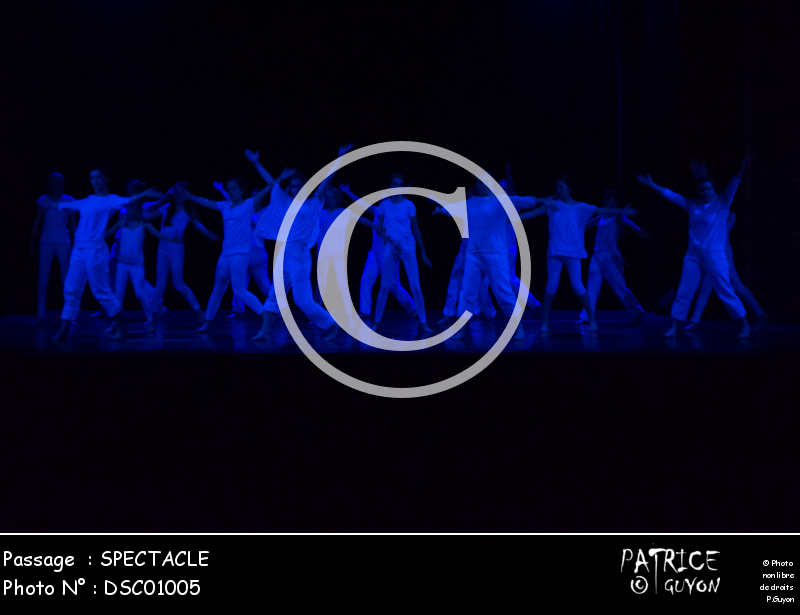 SPECTACLE-DSC01005