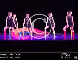SPECTACLE-DSC00980