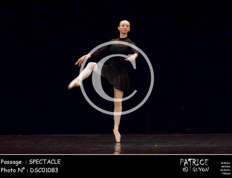 SPECTACLE-DSC01083