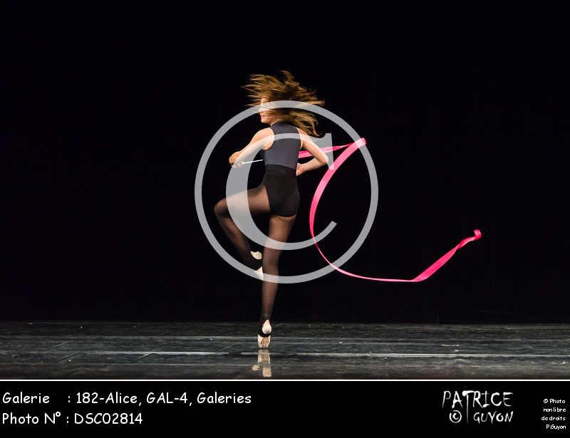 182-Alice, GAL-4-DSC02814