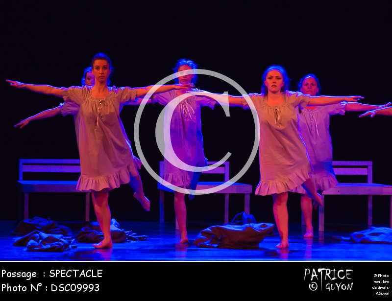 SPECTACLE-DSC09993