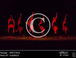 SPECTACLE-DSC00212