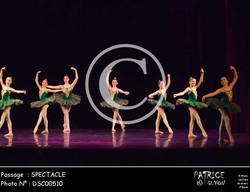 SPECTACLE-DSC00510