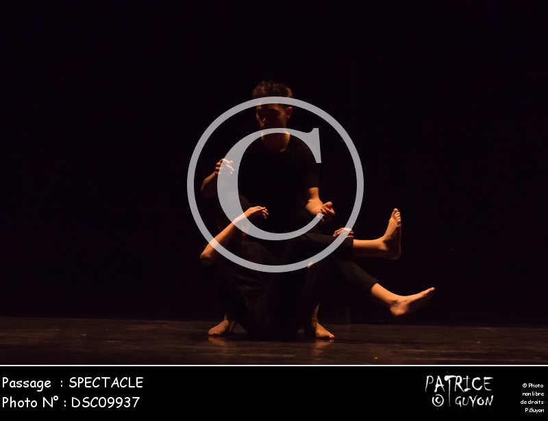 SPECTACLE-DSC09937